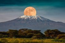 tallest mountain on the african continent