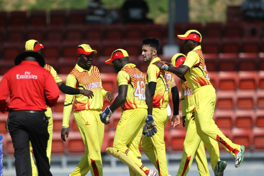 Cricket Cranes resort to  online instructional courses